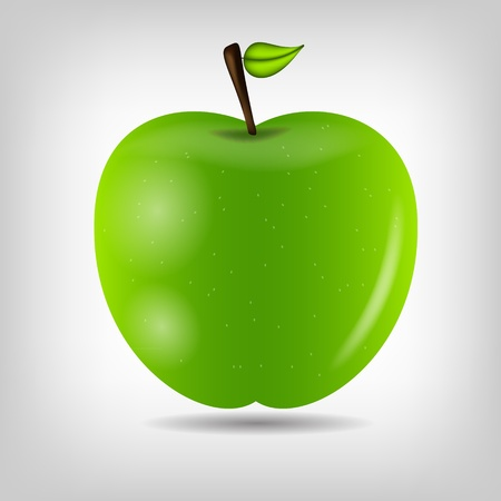granny smith apple: Sweet tasty apple  illustration