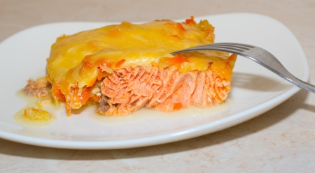 close up tasty salmon and cheese