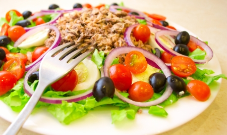 salad fork: Delicious salad with tuna, tomatoes, eggs, olives and peppers