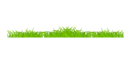 Flower and grass Borders set  vector illustration Stock Vector - 17472278