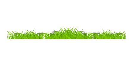 Flower and grass Borders set  vector illustration Stock Vector - 17472278