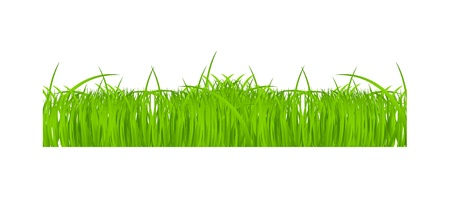 Flower and grass Borders set  vector illustration Stock Vector - 17472290