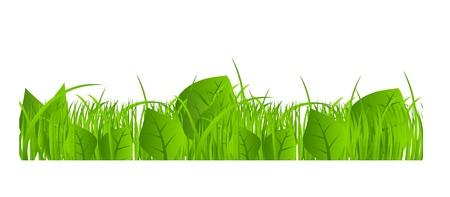 Flower and grass Borders set  vector illustration Stock Vector - 17472277