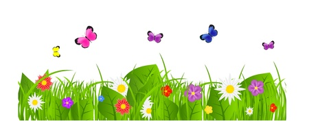 Flower and grass Borders set  vector illustration Illustration