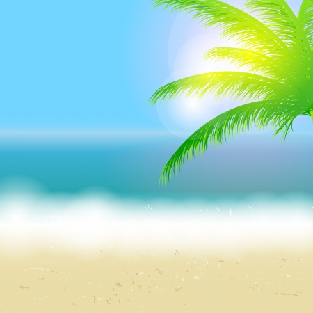tropical beach panoramic: Beautiful summer background with beach, sea, sun and palm tree V Illustration
