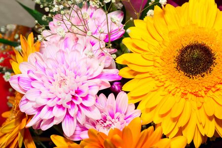 Colorful flowers bouquet Stock Photo - 17707727