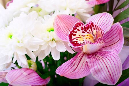 Bouquet of orchids and chrysanthemums isolated on white backgrou photo