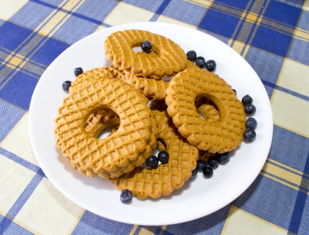 Biscuits with blueberries photo