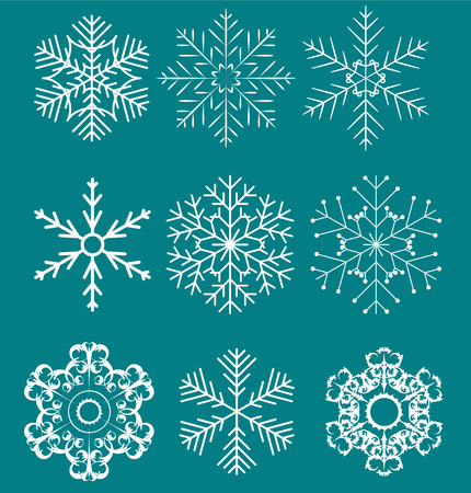 Set of beautiful snowflakes vector illustration Vector