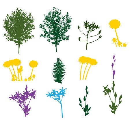 Set of Plant, Tree, Foliage Elements Silhouette Vector Illustration Illustration