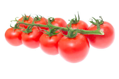 The Branch of Cherry Tomatoes photo