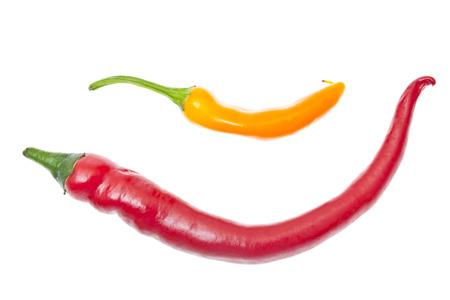 Fresh Colorful Hot Chili Pepper on White photo