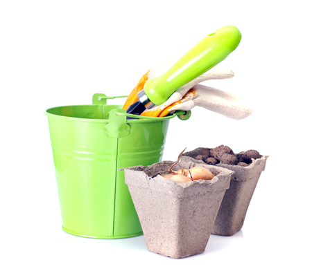 Planting Flowers. Bucket, Shovel, Seeds, Dlay Isolated on White photo