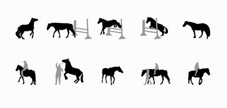 Horse with a Rider Runs, Hops, Gallops. Vector