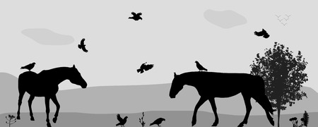 silhouette horse: Coney Walk, Birds Fly in Nature. Vector Illustration. Illustration