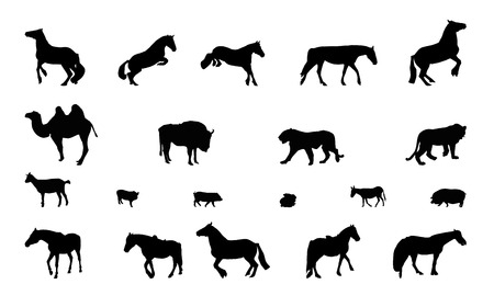 Silhouette of Wild and Domestic Animals. Black and White.  Vector