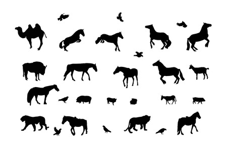 Silhouette of Wild and Domestic Animals, Bird. Black & White.  Vector