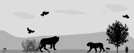 mara: Wild Animals on the Prowl.