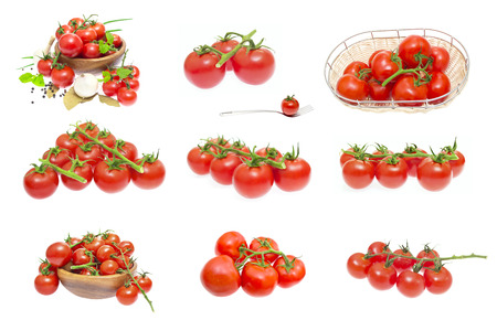 Branch of tomatoes isolated on white background photo