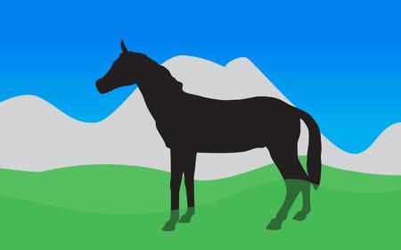 eats: Horse Walks, Eats the Grass  Vector Illustration   Illustration