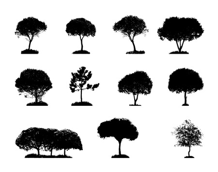Tree Silhouette Isolated on White Backgorund  Vecrtor Illustrati