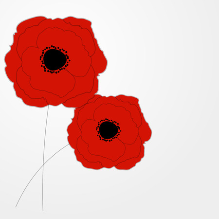 Red Poppies Flower Background Vector Illustration Vector