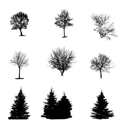 Ensemble de silhouette d'arbre isolé sur blanc Backgorund. Vecrtor Illustration Banque d'images - 33084170