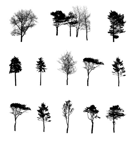Set of Tree Silhouette Isolated on White Backgorund. Vecrtor Illustration