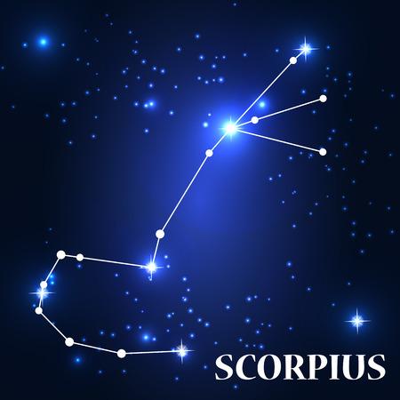 traits: Symbol: Scorpius Zodiac Sign. Vector Illustration.