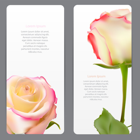 white lilly: Beautiful Floral Cards with  Realistic Flowers