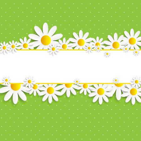 daisy flower: Flora Daisyl Design Vector illustration