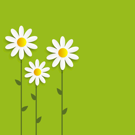 repetition row: Flora Daisyl Design Vector Illustartion