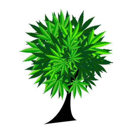 canabis: Abstract Cannabis Tree Background Vector Illustration EPS10 Illustration