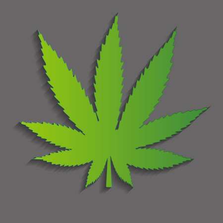 canabis: Abstract Cannabis Background Vector Illustration