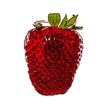 large group of objects: Sweet Tasty Strawberry. Vector Illustration. EPS10