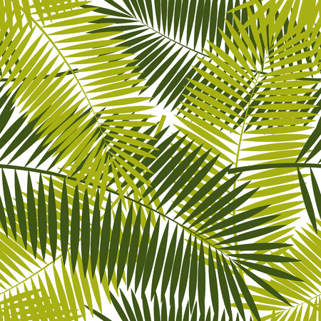 rainforest tree: Palm Leaf Seamless Pattern Background Vector Illustration