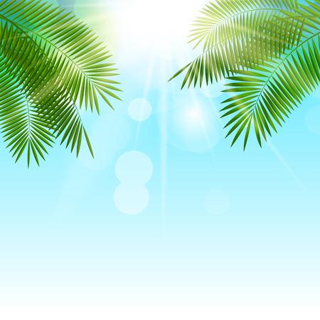 fondo natural: Verano Soleado Fondo Natural Ilustraci�n Vector EPS10 Vectores