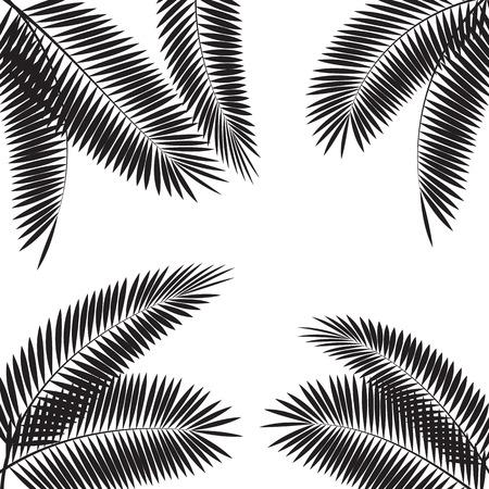 clima tropical: Ilustración de hoja de palma del vector