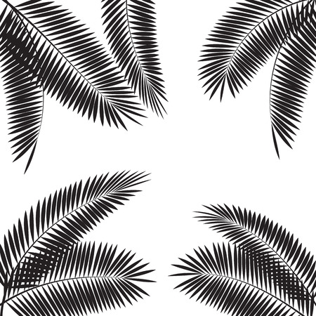 Palm Leaf Vector Illustration Stok Fotoğraf - 40117345