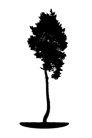 branch cut: Tree Silhouette Isolated on White Backgorund. Vecrtor Illustration. EPS10 Illustration
