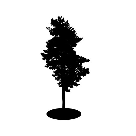 backgorund: Tree Silhouette Isolated on White Backgorund. Vector Illustration. EPS10