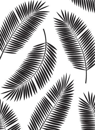 Palm Leaf Vector Frame Background Illustration  Vectores