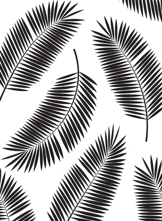 Palm Leaf Vector Frame Background Illustration  矢量图像