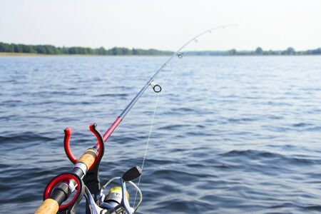 bait: Sea Fishing with Spinning, Bait.