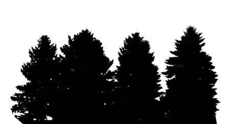 backgorund: Tree Silhouette Isolated on White Backgorund Vectores