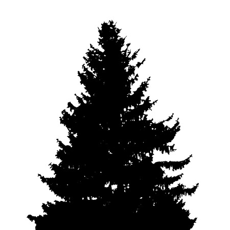 branch cut: Tree Silhouette Isolated on White Background