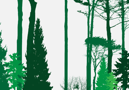 forrest: Image of Nature. Tree Silhouette. Eco banner. Vector Illustration. EPS10