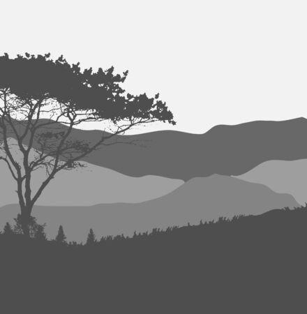 arboles blanco y negro: Imagen de la Naturaleza. Silueta del árbol. Ilustración del vector.