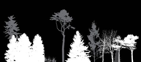 pine forest: Image of Nature. Tree Silhouette. Eco banner. Vector Illustration. EPS10