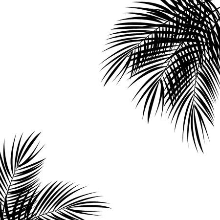 Palm Leaf Vector Background Isolated Illustration EPS10